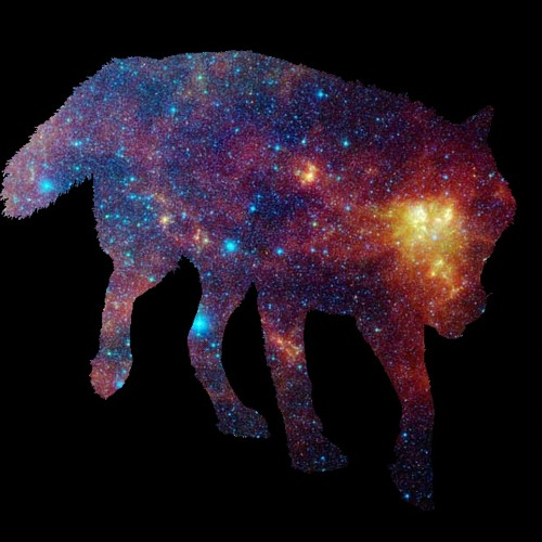 Galaxy Wolf (EP Out Now)'s avatar