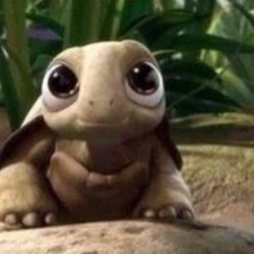 jakey turtle's avatar