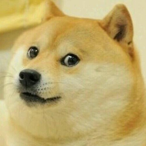 Doggy Doge's avatar