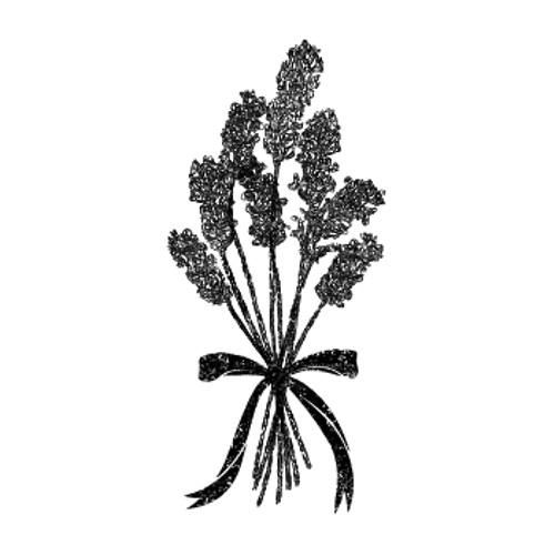 Lavender Pillow's avatar
