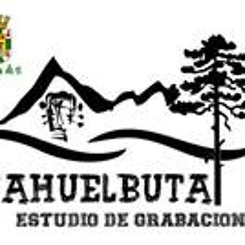 Estudio Nahuelbuta's avatar