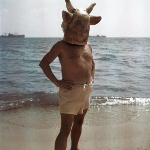 forcetengale's avatar