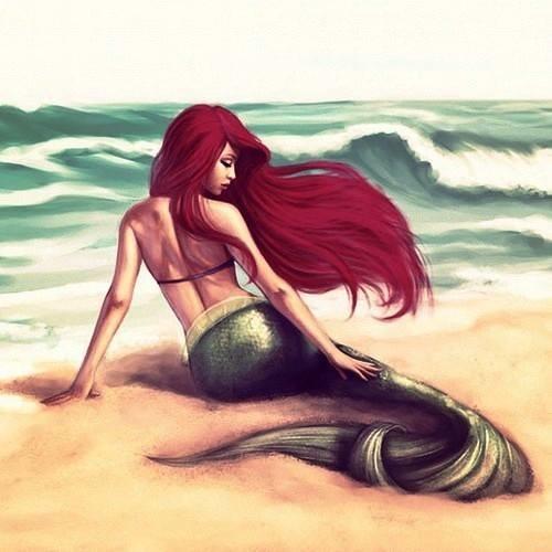Manar El sery's avatar