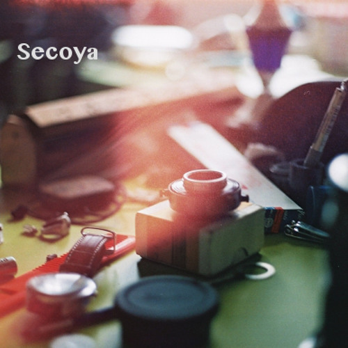 Secoya's avatar