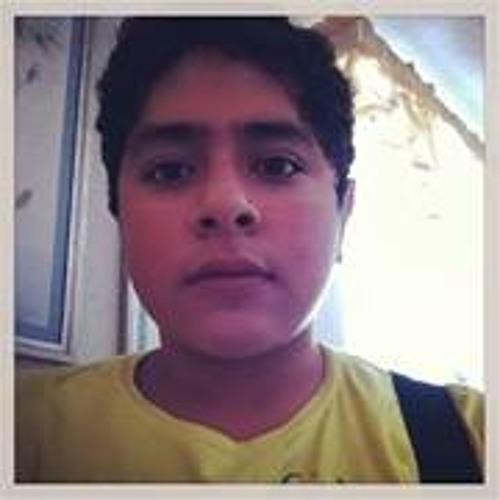 Rene Ibañez's avatar