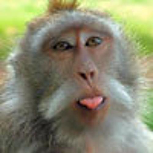 fatcat's avatar