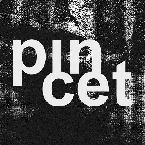 Pincet's avatar