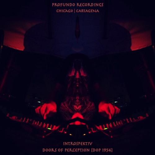 Profundo Recordings's avatar