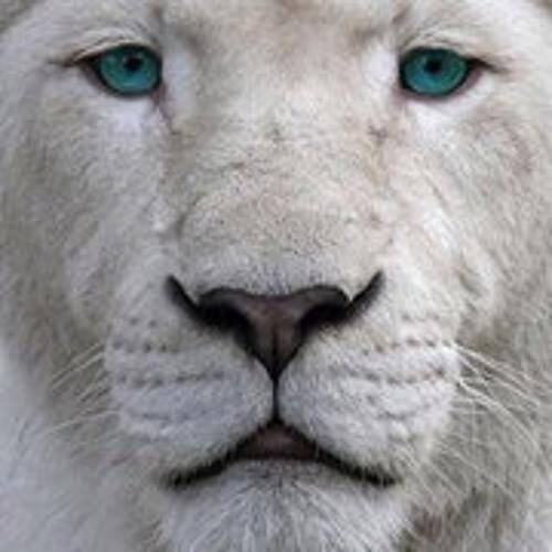 Chorriado Schrader's avatar