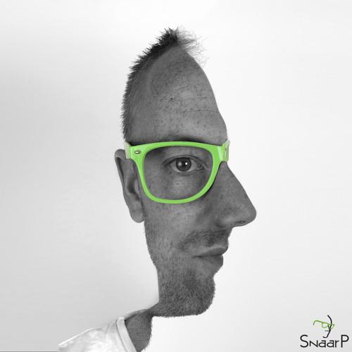 Snaar P's avatar
