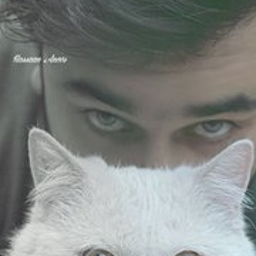 Hassaan Anees's avatar