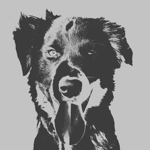 The Beär's avatar