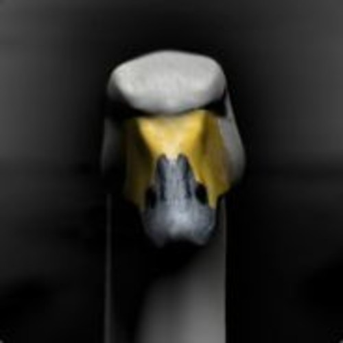 mr2k's avatar