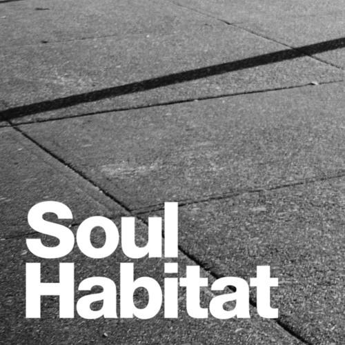 Soul Habitat's avatar
