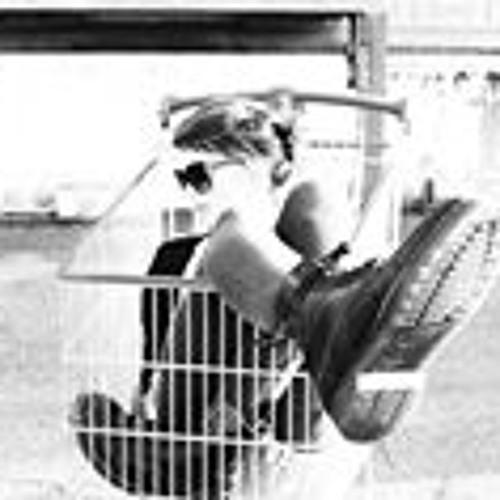 Laura Brandão 5's avatar