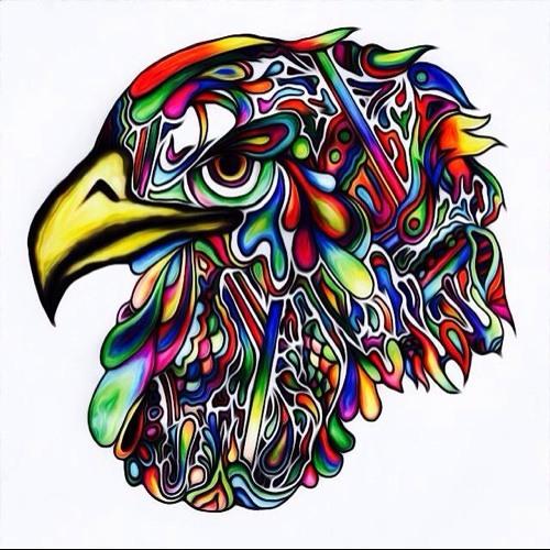 New Bird's avatar