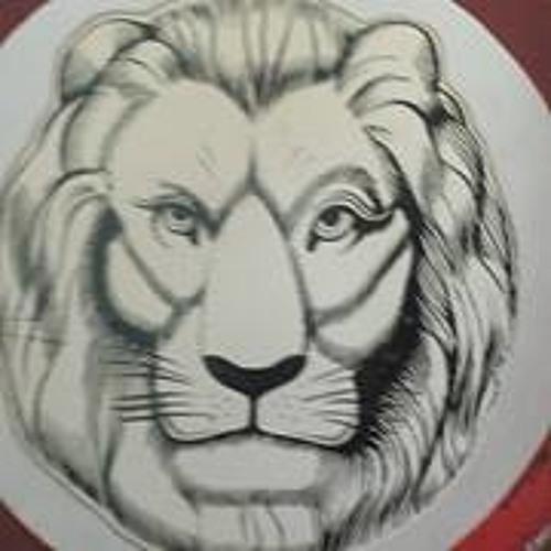 Michael Vanrillaer's avatar