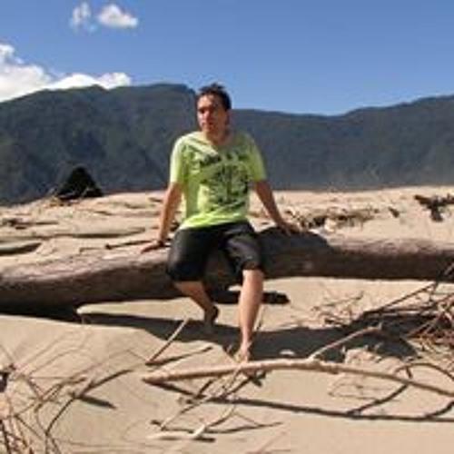 Heric Mauricio Rios Nuñez's avatar