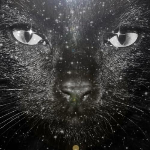 hotfudgexs's avatar