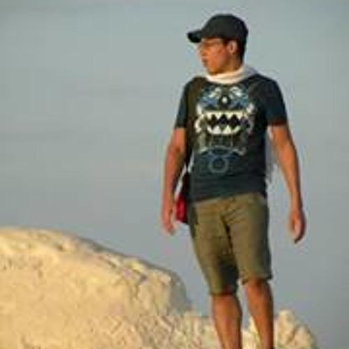 Mahmoud.Ghali's avatar