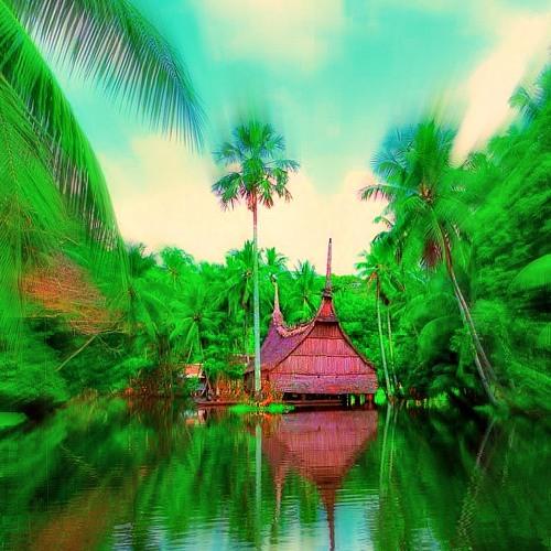 tropical-suffer-island's avatar