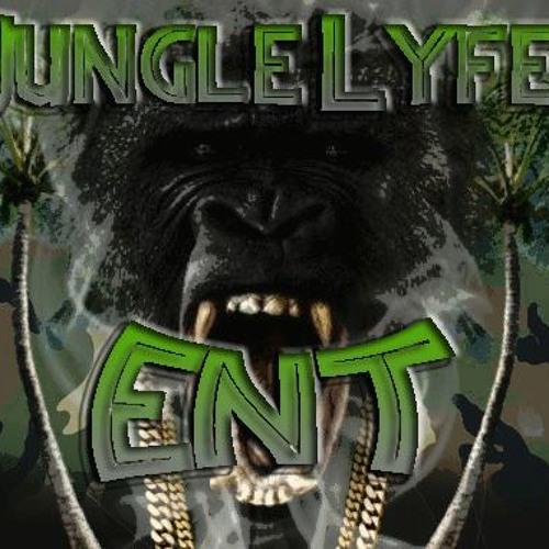 Jungle Lyfe Entertainment's avatar