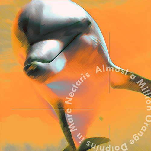 A Million Orange Dolphins's avatar