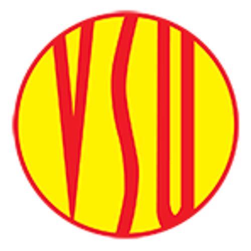 VSU Bruins's avatar