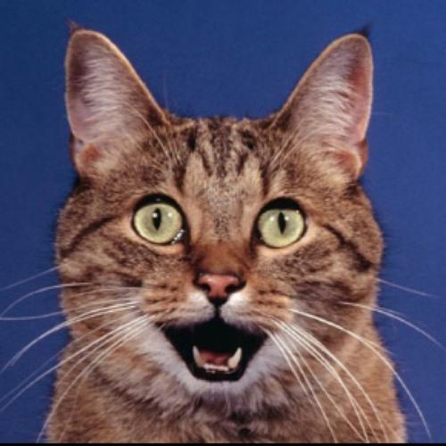 KillaCuz's avatar