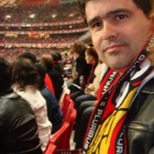 Luis Ferreira 126's avatar
