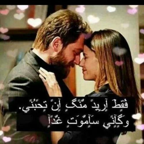 halabi95's avatar