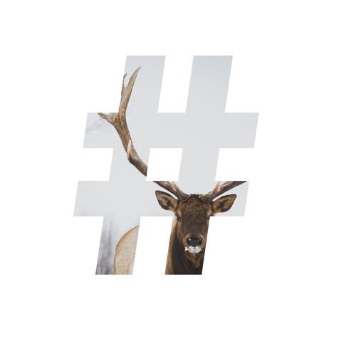 DjSa-x's avatar