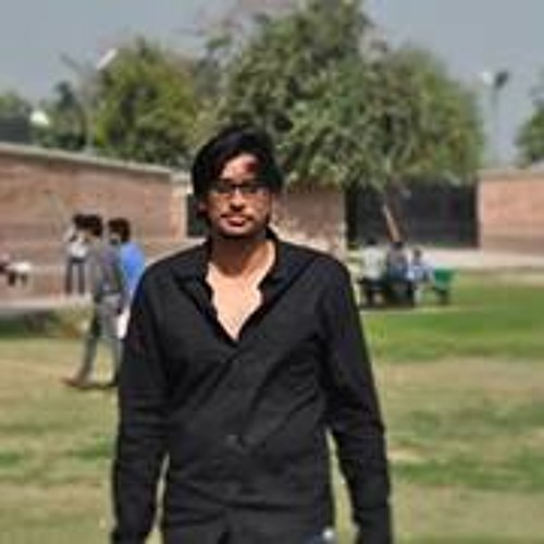 Mian Muhammad 2's avatar