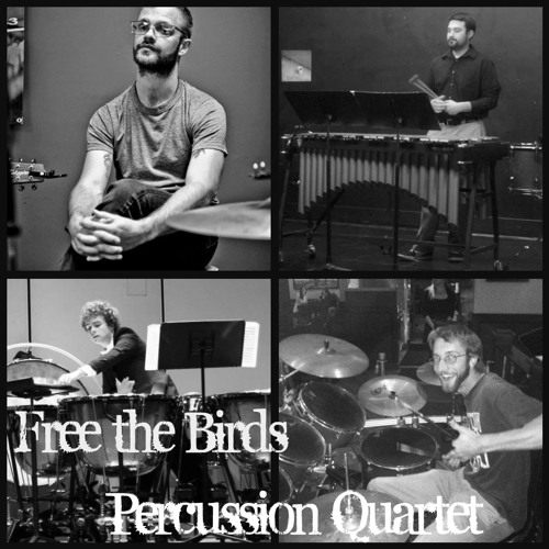 Free the Birds Quartet's avatar
