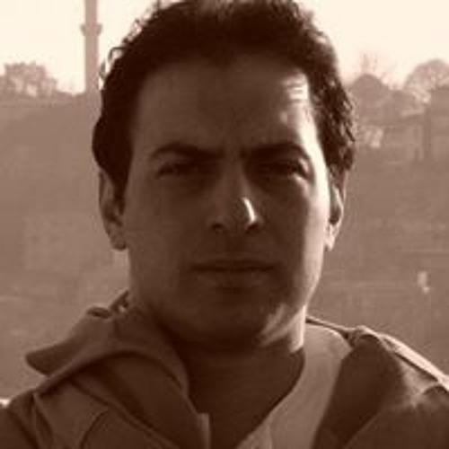 Amir Abas Kaveh's avatar