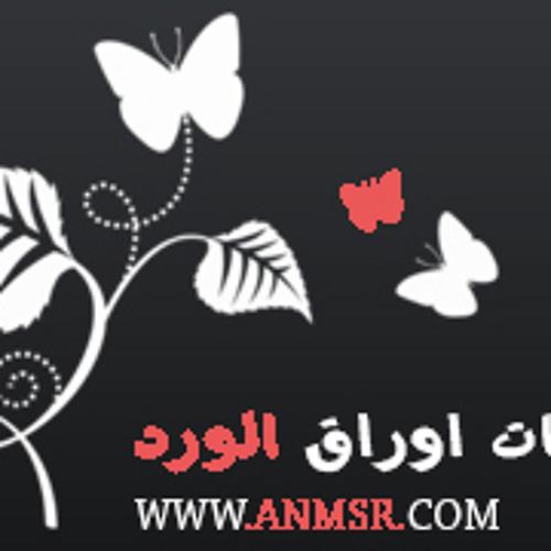 anmsr.com's avatar