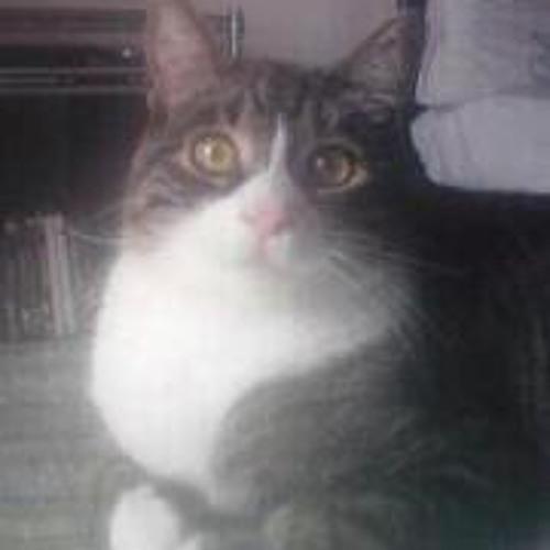 Thomas Fossati's avatar
