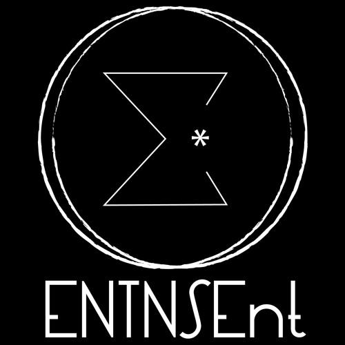 ENTNSEnt's avatar