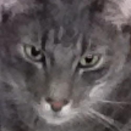 Pete McFly's avatar