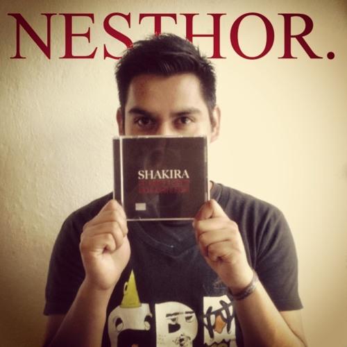 NesthoOr Daniel's avatar