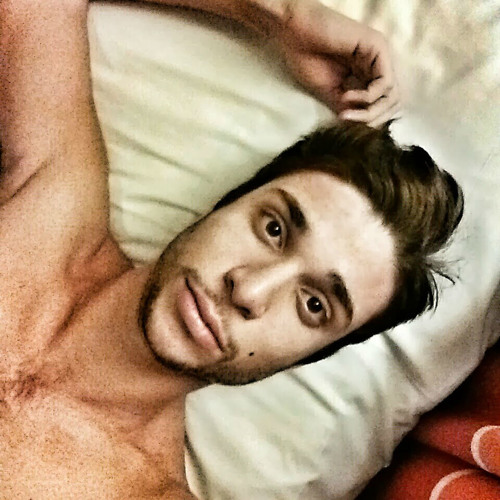 Omer Nitzan's avatar