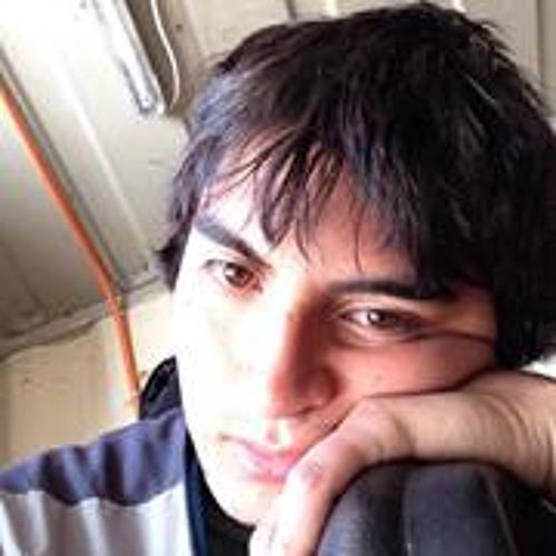 Fabian Meza 7's avatar