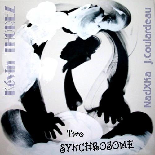 synchrosome 2's avatar