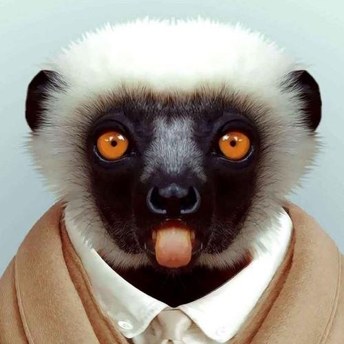 MiZi00978's avatar