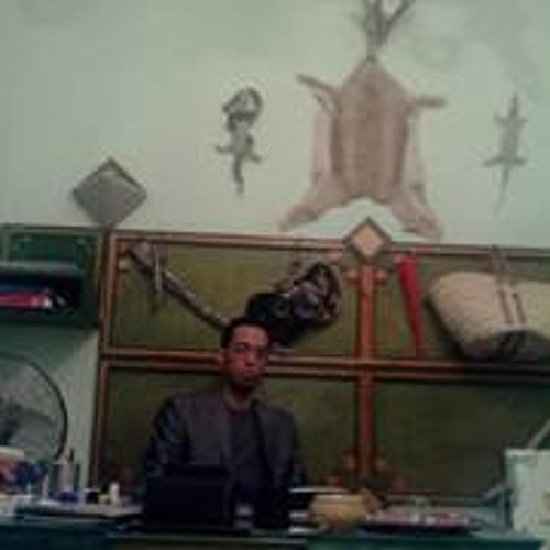 Kamikaz Hamza Abidi's avatar