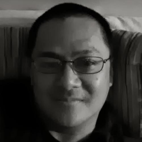 ingo.dom's avatar