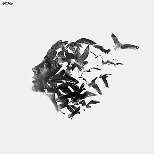 Dina Nasr Eldeen's avatar