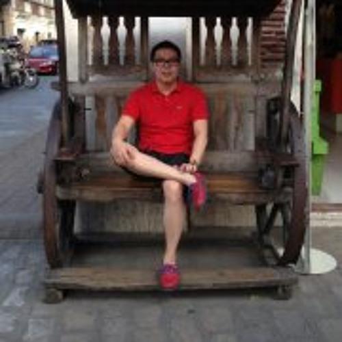 Enrique Robles Sipin's avatar