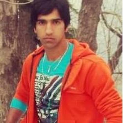 Farhad Butt 1's avatar