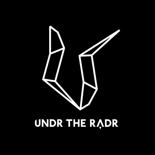 UNDR THE RADR's avatar